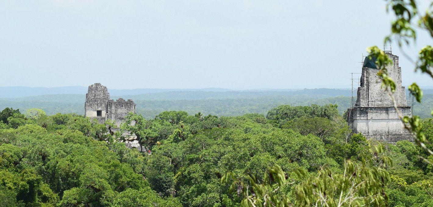 Tikal Overnight